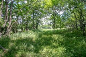 Burlingame Dream Home and Acreage in Osage, KS (59 of 73)
