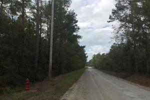 Fries Bay Recreational and Hunting Tract