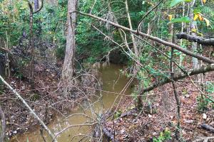 Hawleek Creek Recreational Property - Newberry County SC