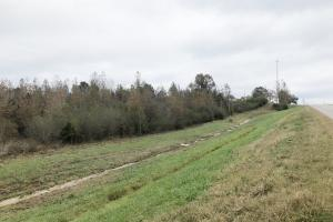 Hwy 24 Vina 5.9 Acres in Franklin, AL (7 of 7)