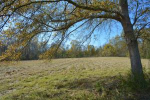 Chelsea Farm and Homesite - Shelby County AL