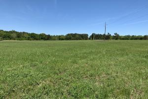 Ramsey Road Farm Tract in Mobile, AL (4 of 9)