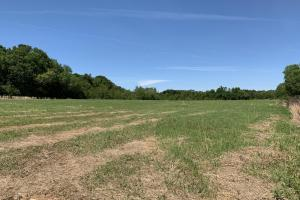 Ramsey Road Farm Tract in Mobile, AL (5 of 9)