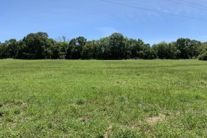 Ramsey Road Farm Tract in Mobile, AL (2 of 9)