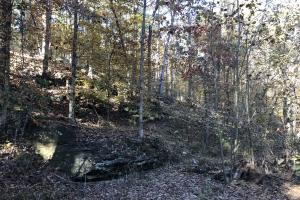 Sofkahatchee Creek Timber and Rec Tract in Elmore, AL (3 of 36)