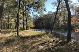 Combahee River Hunting & Recreational Property in Colleton, SC (57 of 102)