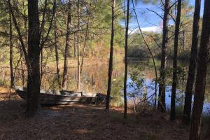 Combahee River Hunting & Recreational Property in Colleton, SC (5 of 102)