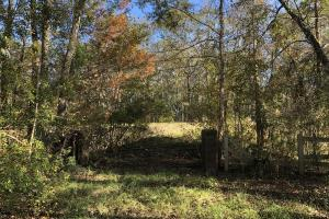 Combahee River Hunting & Recreational Property in Colleton, SC (101 of 102)