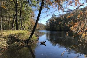 Combahee River Hunting & Recreational Property - Colleton County SC