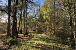 Combahee River Hunting & Recreational Property in Colleton, SC (102 of 102)
