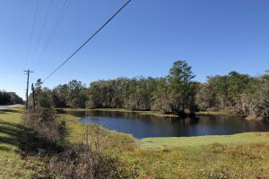 Combahee River Hunting & Recreational Property in Colleton, SC (14 of 102)