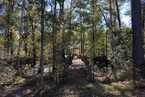 Combahee River Hunting & Recreational Property in Colleton, SC (53 of 102)