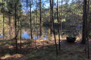 Combahee River Hunting & Recreational Property in Colleton, SC (46 of 102)