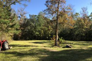Combahee River Hunting & Recreational Property in Colleton, SC (52 of 102)