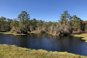 Combahee River Hunting & Recreational Property in Colleton, SC (15 of 102)