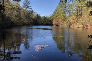 Combahee River Hunting & Recreational Property in Colleton, SC (37 of 102)