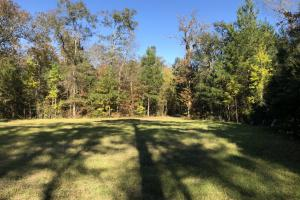 Combahee River Hunting & Recreational Property in Colleton, SC (77 of 102)