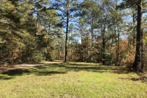 Combahee River Hunting & Recreational Property in Colleton, SC (8 of 102)