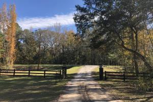 Combahee River Hunting & Recreational Property in Colleton, SC (9 of 102)
