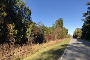 Combahee River Hunting & Recreational Property in Colleton, SC (100 of 102)