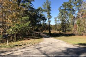Combahee River Hunting & Recreational Property in Colleton, SC (16 of 102)