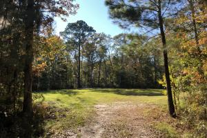 Combahee River Hunting & Recreational Property in Colleton, SC (49 of 102)