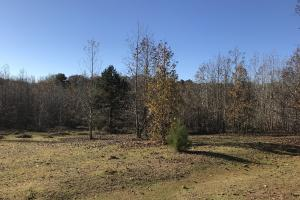 Anderson Interstate 85 Development and Homesite Land in Anderson, SC (2 of 13)