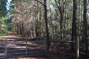 Gated trail system on the West side of Interstate 95 portion (8 of 14)