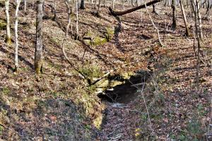 Cave on North end of property (5 of 22)