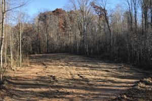 Trinity Equestrian Stables and Estates Lot 1 - Loudon County TN