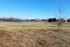 Front view from homesite (2 of 8)