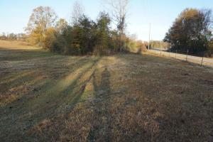 Lower Hull Road Pasture Land in Tuscaloosa, AL (7 of 7)