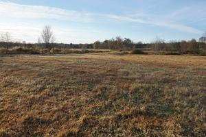 Lower Hull Road Pasture Land in Tuscaloosa, AL (5 of 7)