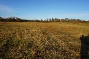 Lower Hull Road Pasture Land in Tuscaloosa, AL (4 of 7)
