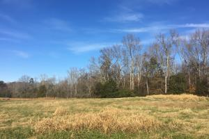 Beautiful Farmland with Woods & Pond - Spartanburg County SC