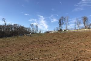 Trinity Equestrian Stables and Estates Lot 3 in Loudon, TN (17 of 28)