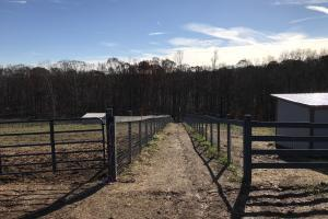 Trinity Equestrian Stables and Estates  Lot 7 in Loudon, TN (14 of 29)