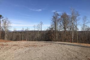 Trinity Equestrian Stables and Estates  Lot 7 in Loudon, TN (27 of 29)