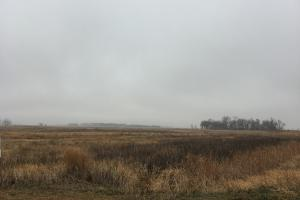 Prime Pheasant Ground - CRP Cash in Lincoln, SD (6 of 8)