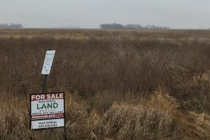 Prime Pheasant Ground - CRP Cash in Lincoln, SD (4 of 8)