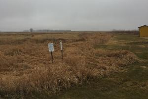 Prime Pheasant Ground - CRP Cash in Lincoln, SD (5 of 8)