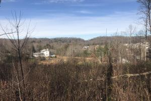Valley Grove Lane Property - Knox County TN
