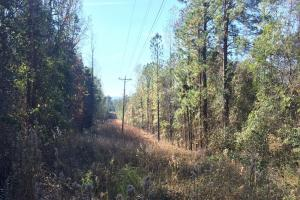 Home Site and Recreational Tract - Elmore County AL