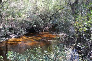 Blackwater River Headwaters Hunting Retreat in Escambia, AL (11 of 28)