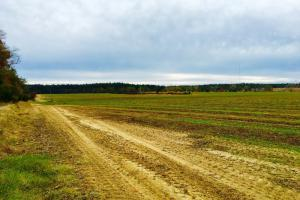 Farmland in Aiken and Barnwell - Barnwell County SC