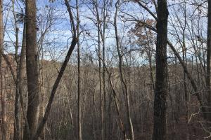 Greenville Mountain Homesite in Greenville, SC (7 of 12)