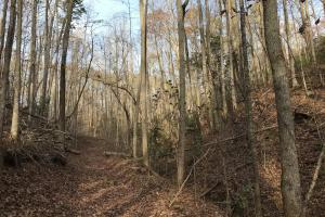 Greenville Mountain Homesite in Greenville, SC (9 of 12)