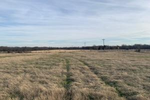 Cattle property in Royse City (4 of 21)