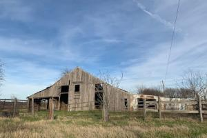 Barn with fencing on 108 acres in Royse City (11 of 21)