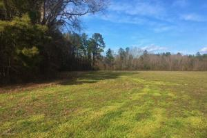 Holly Hill Multi-Use Property - Orangeburg County SC